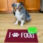Pet Food Bowl Mats - Food